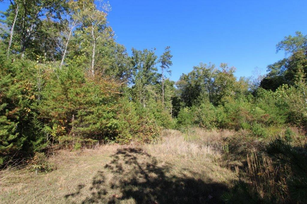 Briarwood Drive, Lot 8,  Farmville, VA