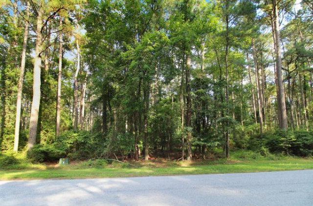 506  Driftwood Dr,  Greenbackville, VA