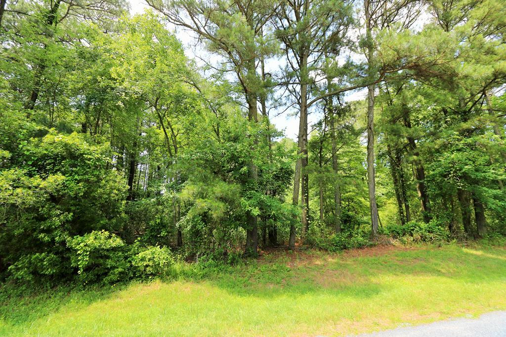 Lot 862  Broadside Dr,  Greenbackville, VA