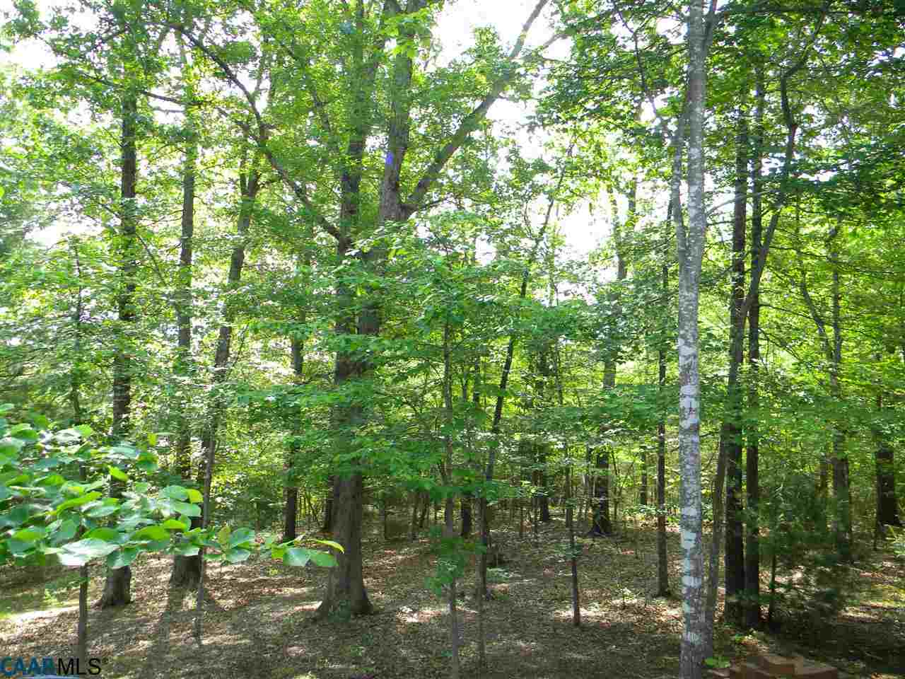1E Fishing Creek Ln 1E, Earlysville, VA, 22936