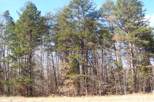 1.24 ac Philpott Road, South Boston, VA, 24592