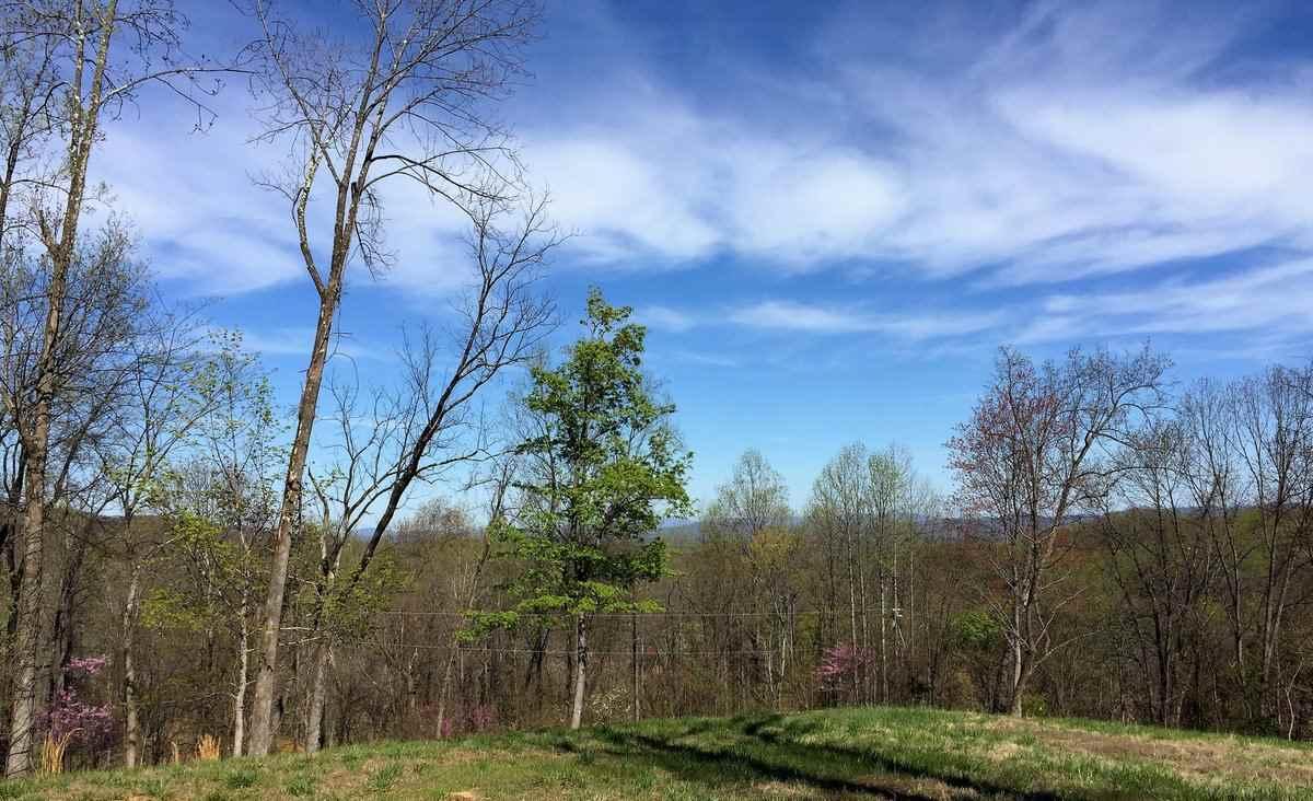 3 Blackberry Ridge Rd, Greenwood, VA, 22943