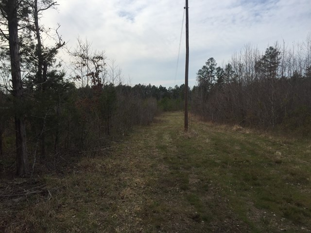00 German Creek Road, Alton, VA, 24520