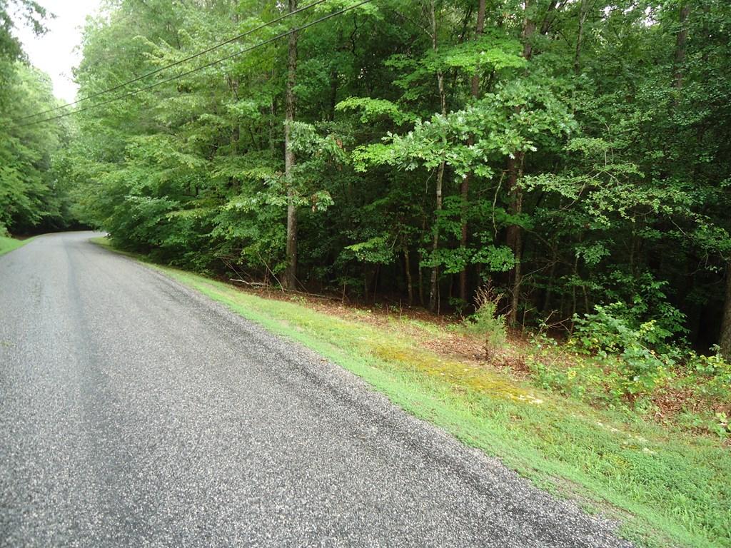 TBD Winding Way, Bracey, VA, 23919