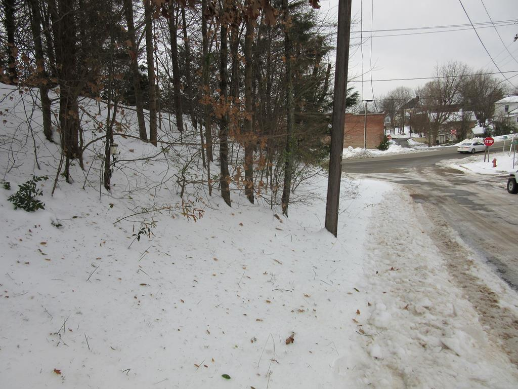 ,20 Acre Second Street, South Boston, VA, 24592