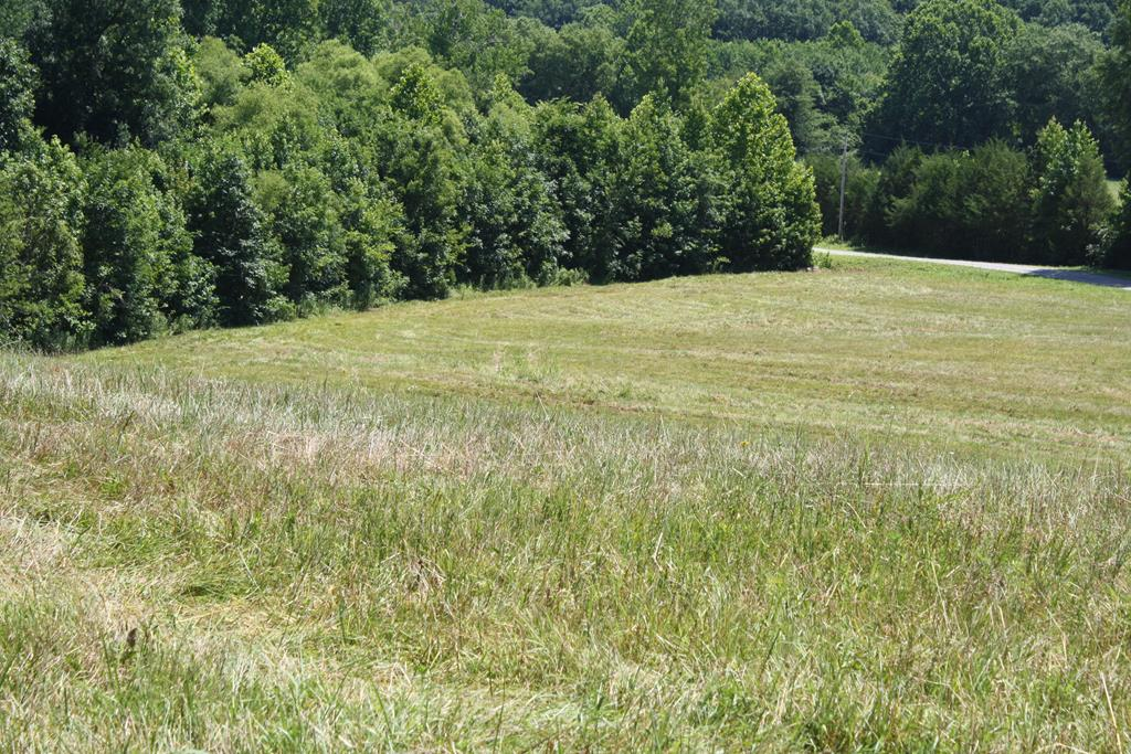 PR12345 S Berles Creek Road, Randolph, VA, 23962