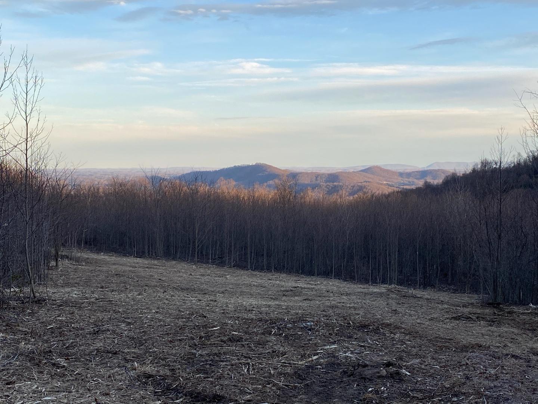 0  ,  Blue Ridge, VA