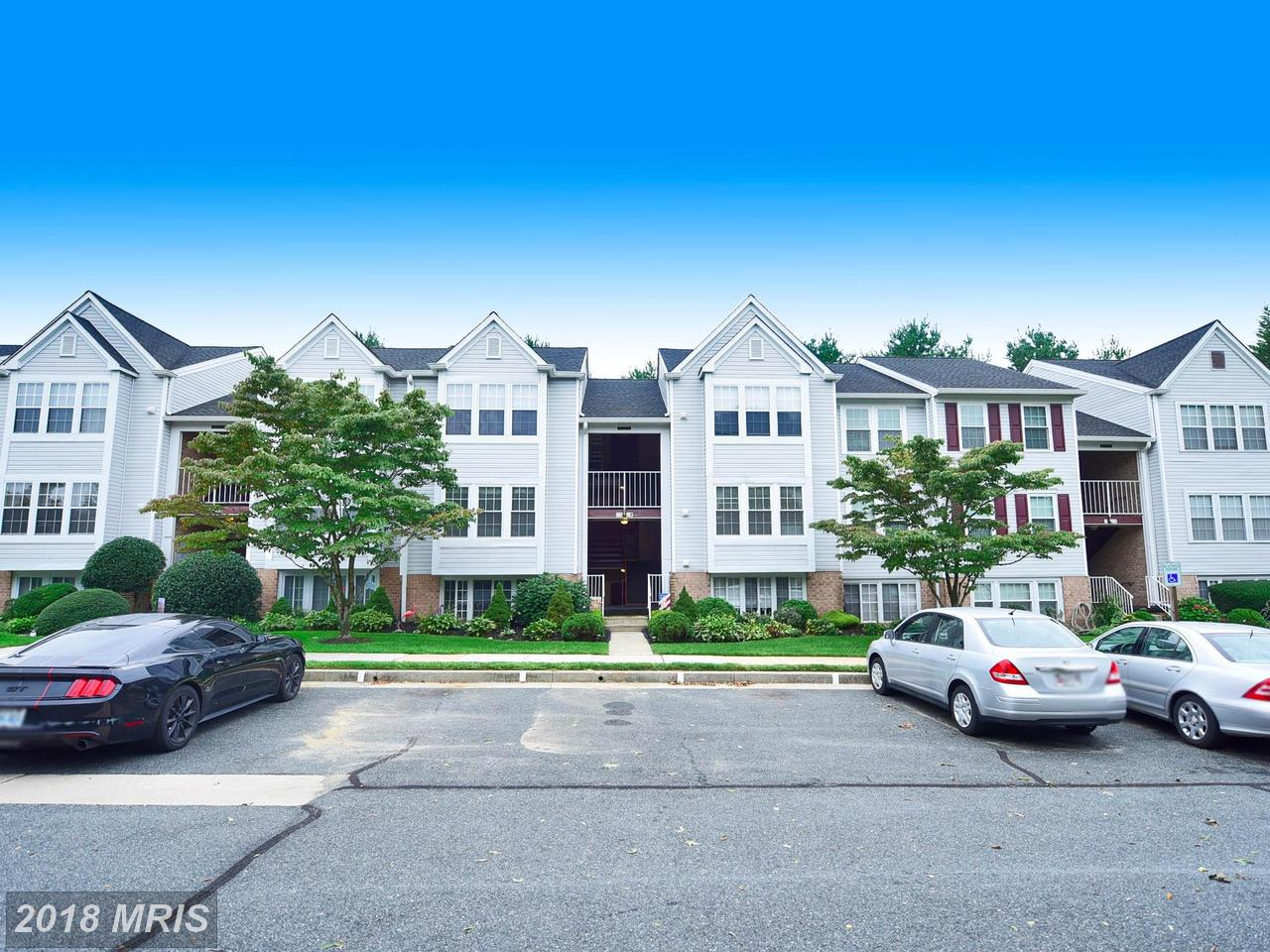 13  Bridle,  Baltimore, MD