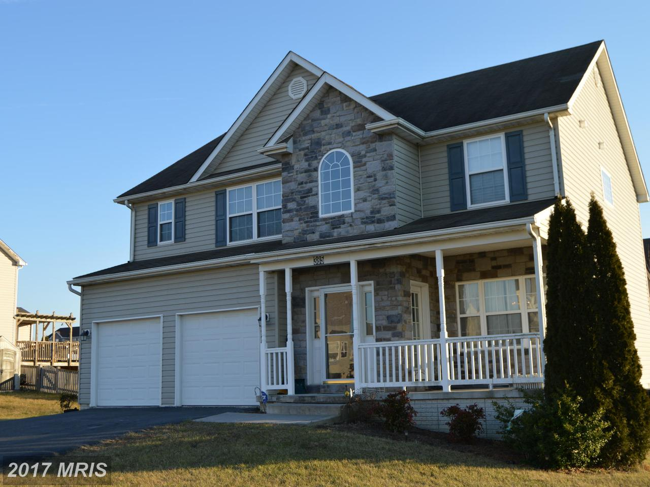 385  Thayers Gull,  Martinsburg, WV
