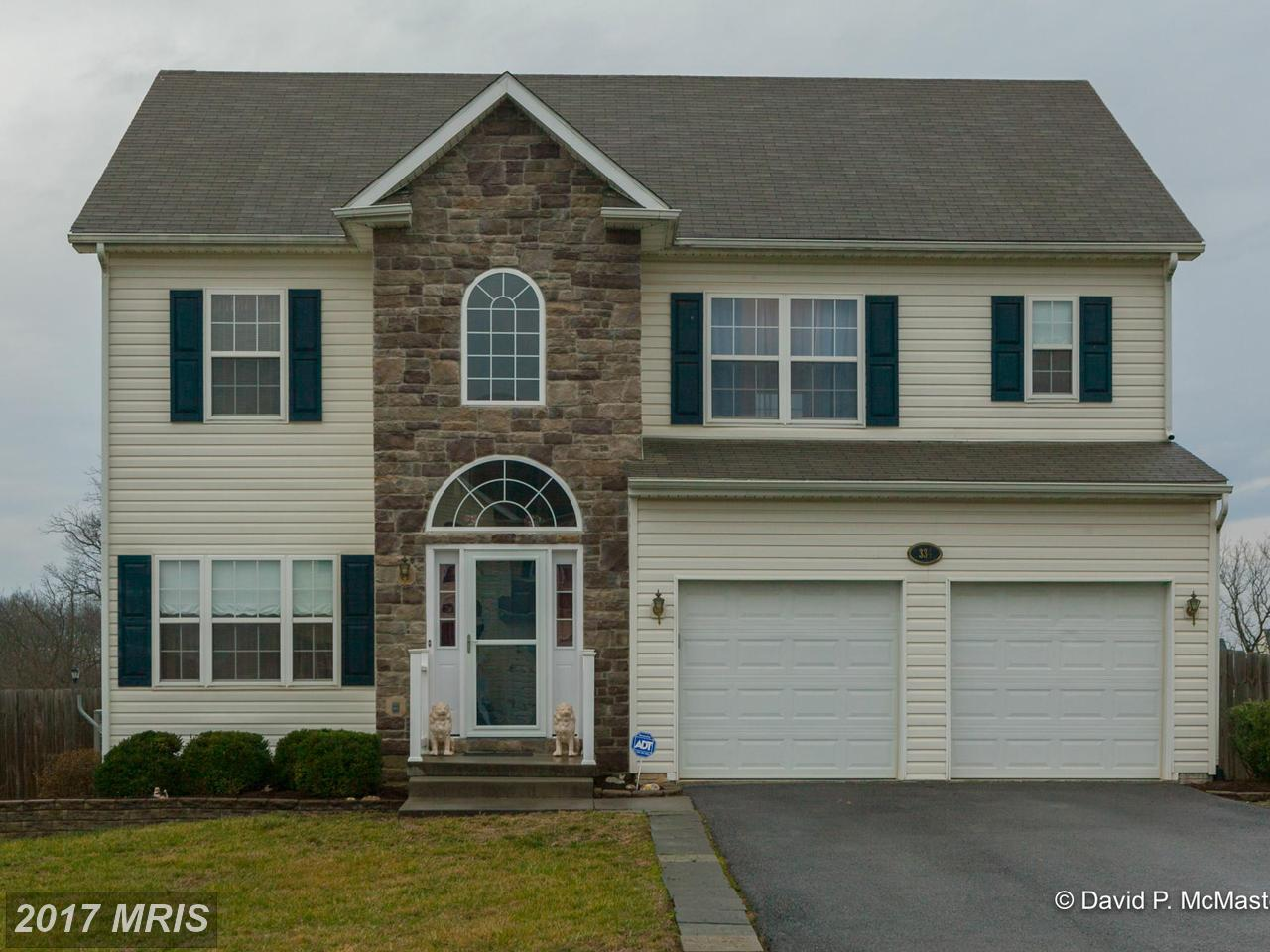 334  Thayers Gull,  Martinsburg, WV