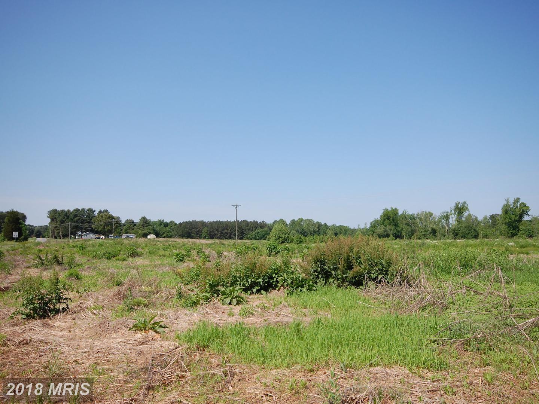 Anderson Mill,  Ruther Glen, VA