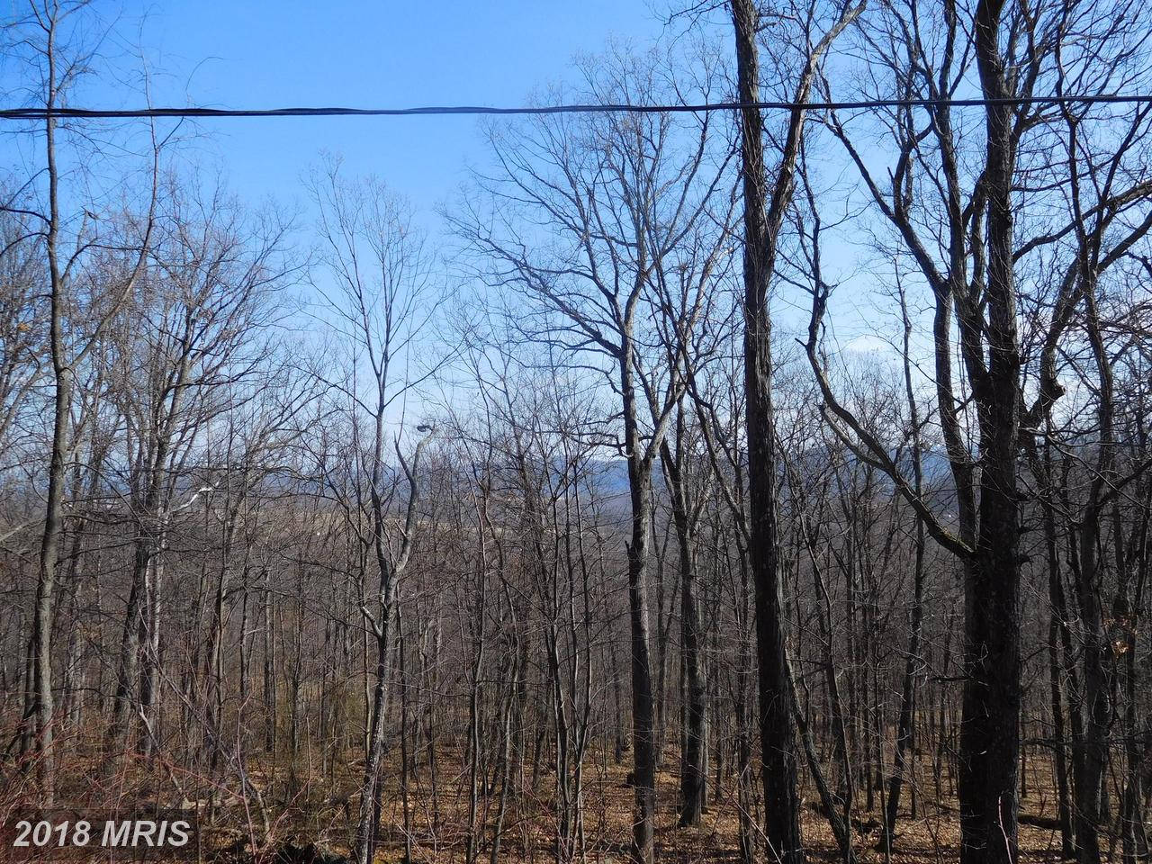 Lot 10 Frenchburg Estates,  Augusta, WV