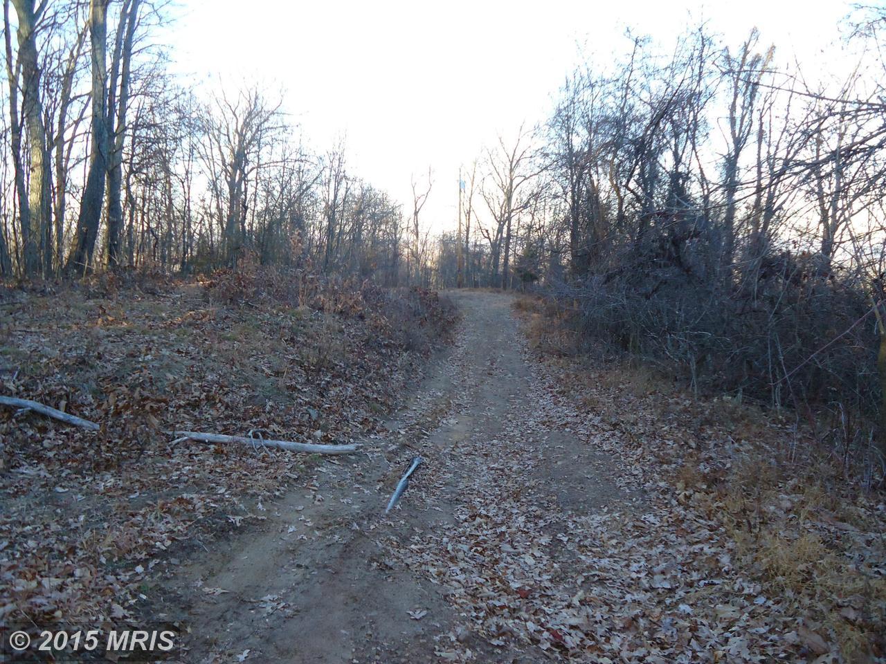 Woodland Mtn Trl/Tall Doe,  Augusta, WV