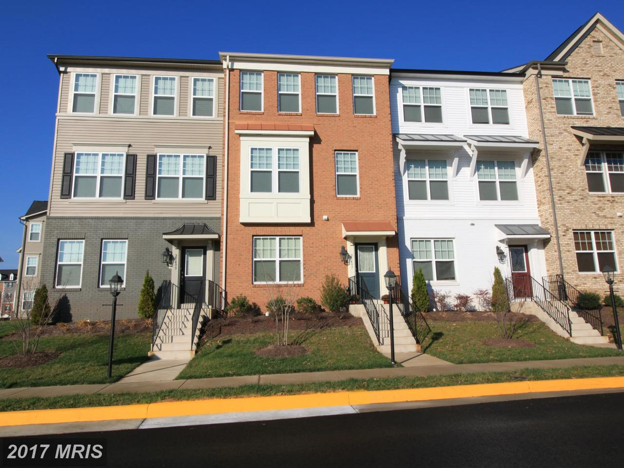 25497  Cancello,  Chantilly, VA