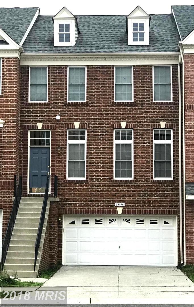 25196  Bald Eagle,  Chantilly, VA
