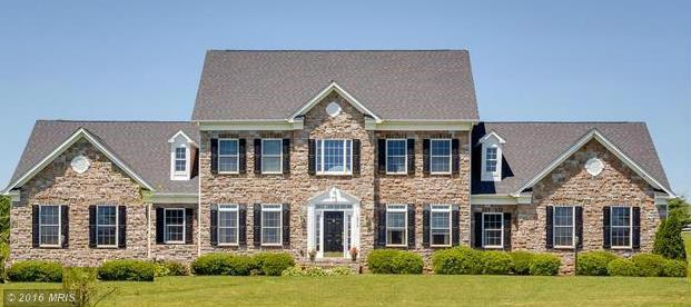 49  Gold Yarrow,  Upper Marlboro, MD