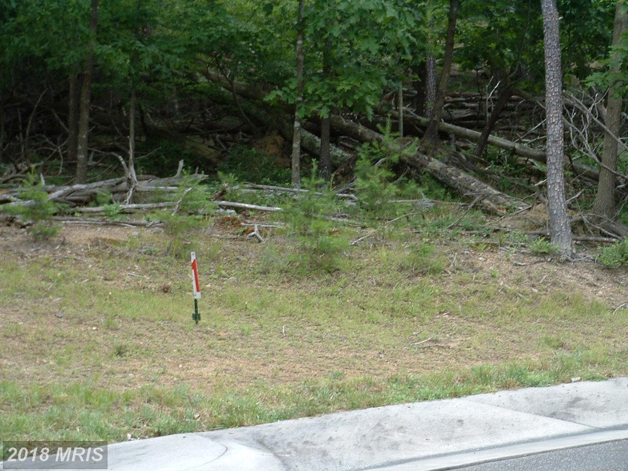 0  Creek Valley - Lot 1,  Basye, VA
