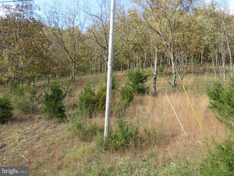42 Deerfield Highlands, Purgitsville, WV, 26852