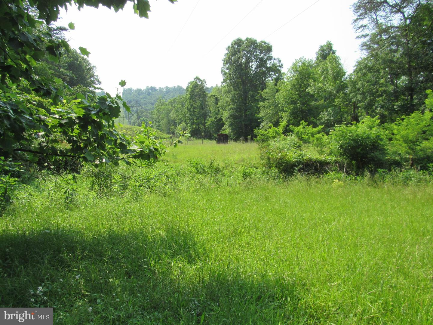563 Meadow Wood, Great Cacapon, WV, 25422