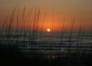 Bethany Beach vacation properties
