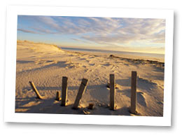 Lewes Delaware vacation rentals